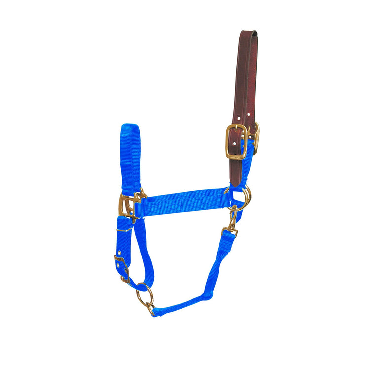 "3/4"" Deluxe Nylon Break-Away Halters with Leather Head Poll, Adjustable Chin & Snap - Halter - Hamilton - Miracle Corp"