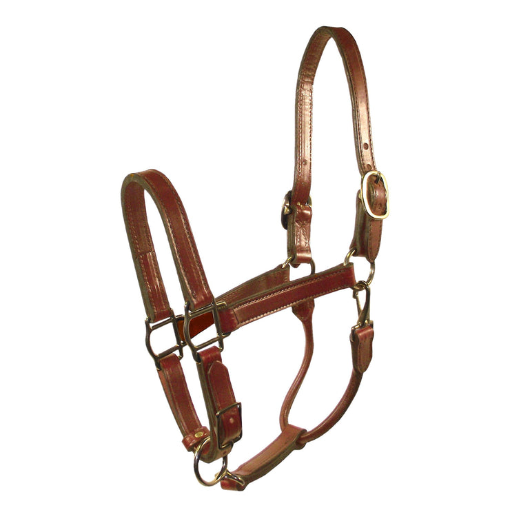 "3/4"" Deluxe Leather Halters with Adjustable Chin & Snap - Halter - Hamilton - Miracle Corp"