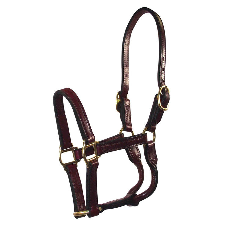 "3/4"" Deluxe Leather Halters - Halter - Hamilton - Miracle Corp"