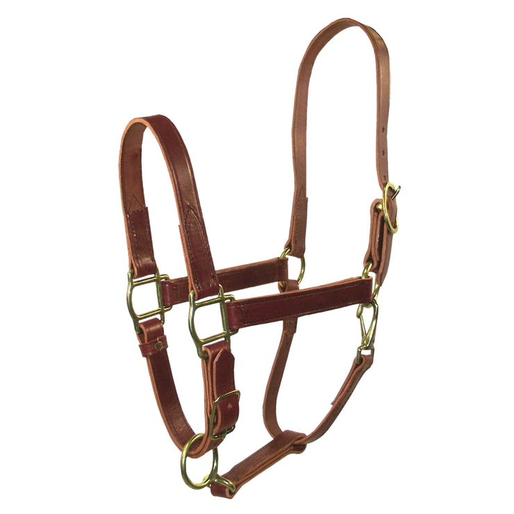 "3/4"" Quality Leather Halters with Adjustable Chin & Snap - Halter - Hamilton - Miracle Corp"