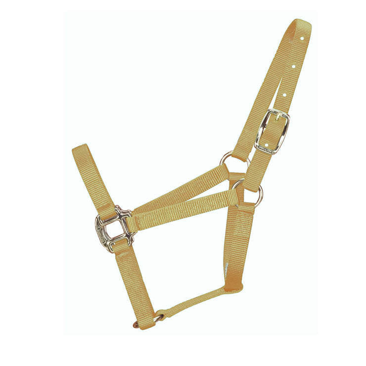 "3/4"" Quality Halter with Brass Hardware - Halter - Hamilton - Miracle Corp"
