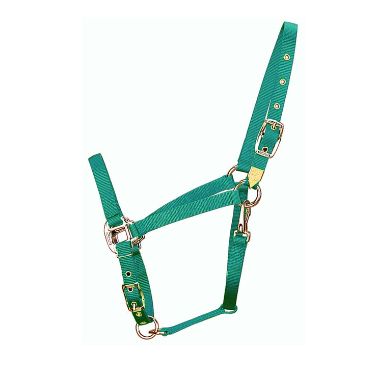 "3/4"" Arabian Deluxe Nylon Halters with Adjustable Chin Strap & Snap - Halter - Hamilton - Miracle Corp"