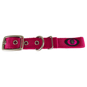 Double Thick Buckle Collars with Brushed Nickle Finish