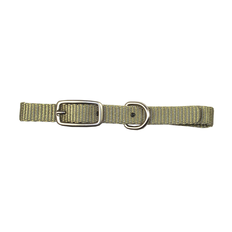 Single Thick Buckle Collars with Brushed Nickel Finish
