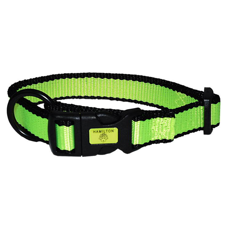Neon Adjustable Collar - Collar - Hamilton - Miracle Corp