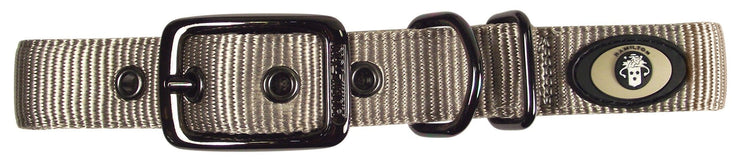 Designer Double Thick Buckle Collar with Gunmetal Finish - Collar - Hamilton - Miracle Corp
