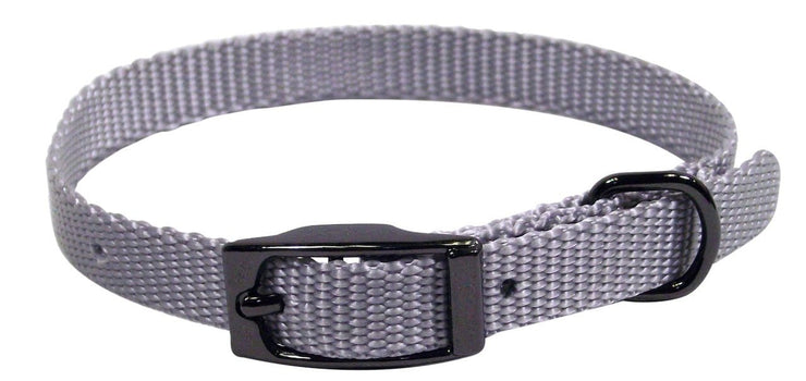 Designer Single Thick Buckle Collar with Gunmetal Finish - Collar - Hamilton - Miracle Corp