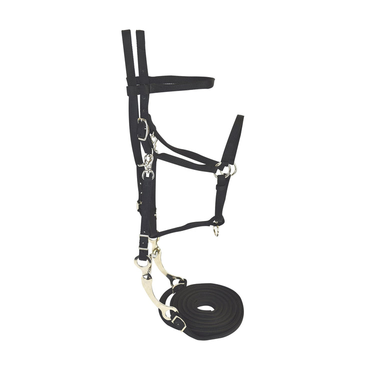 Bridle Set with Headstall, Split Reins, Bit & Curb Strap - Bridle - Hamilton - Miracle Corp