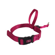 Walk with Me Head Harness