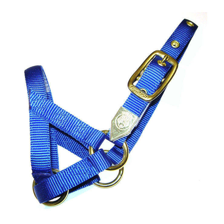 Deluxe Halter with Adjustable Crown - Halter - Hamilton - Miracle Corp
