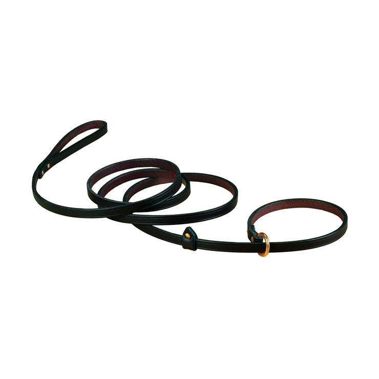 Quick Walker Leather Leash with Slip Collar