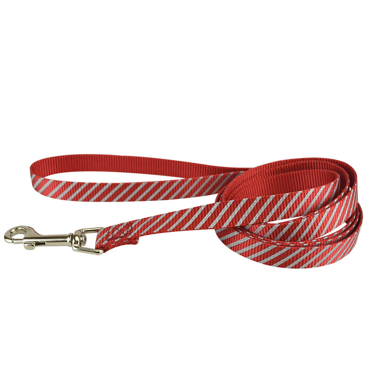 Reflective Bones & Stripes Leashes