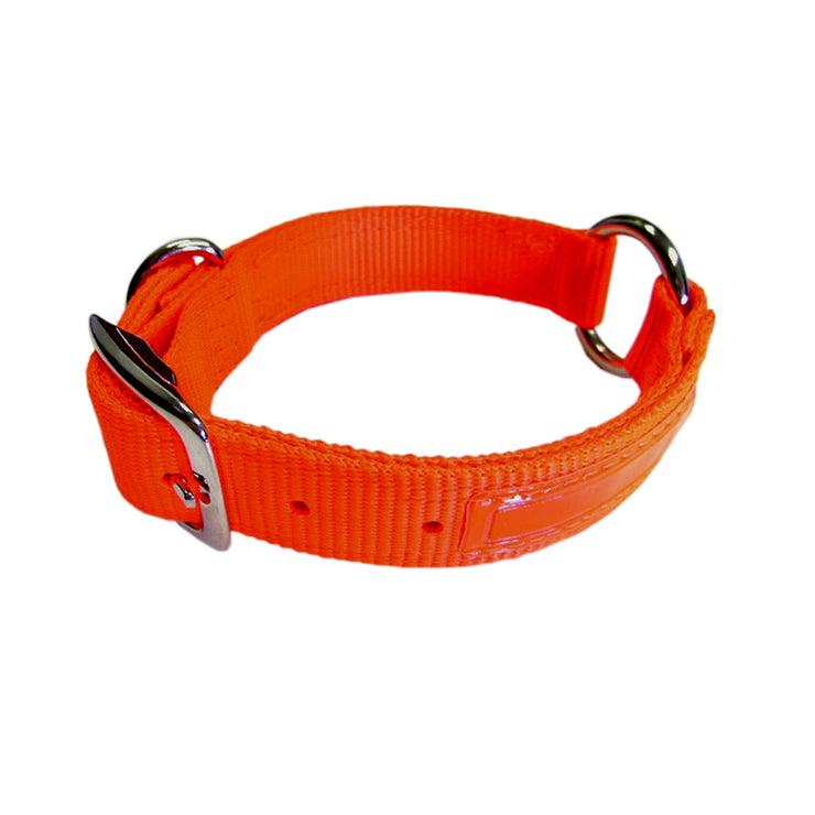 "Hunt/Sport Safe-Rite Buckle Collar with Fluorescent Overlay, Large 16""-28"""