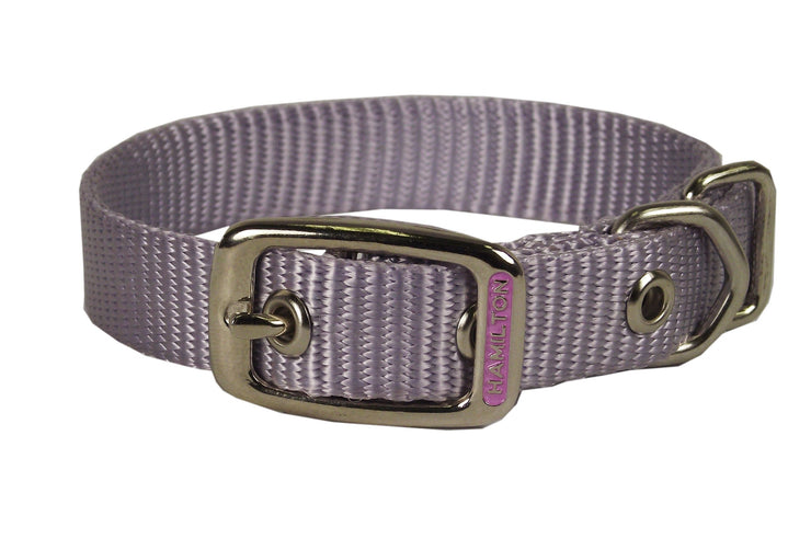 Classic Single Thick Buckle Collars, Medium - Collar - Hamilton - Miracle Corp