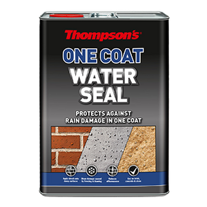 Thompson's Water Seal One Coat 5L
