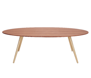 Airfoil Coffee Table - ivadecorstudio
