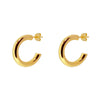 Boston Gold Earrings