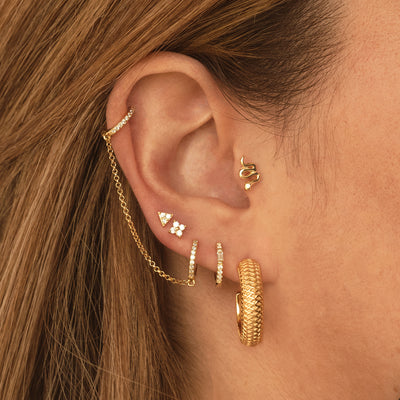 Tarte Gold Earrings
