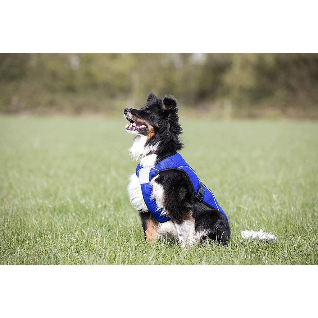 Paws & Presto 'Cool Companion' - Ultimate Dog Cooling Vest/Coat