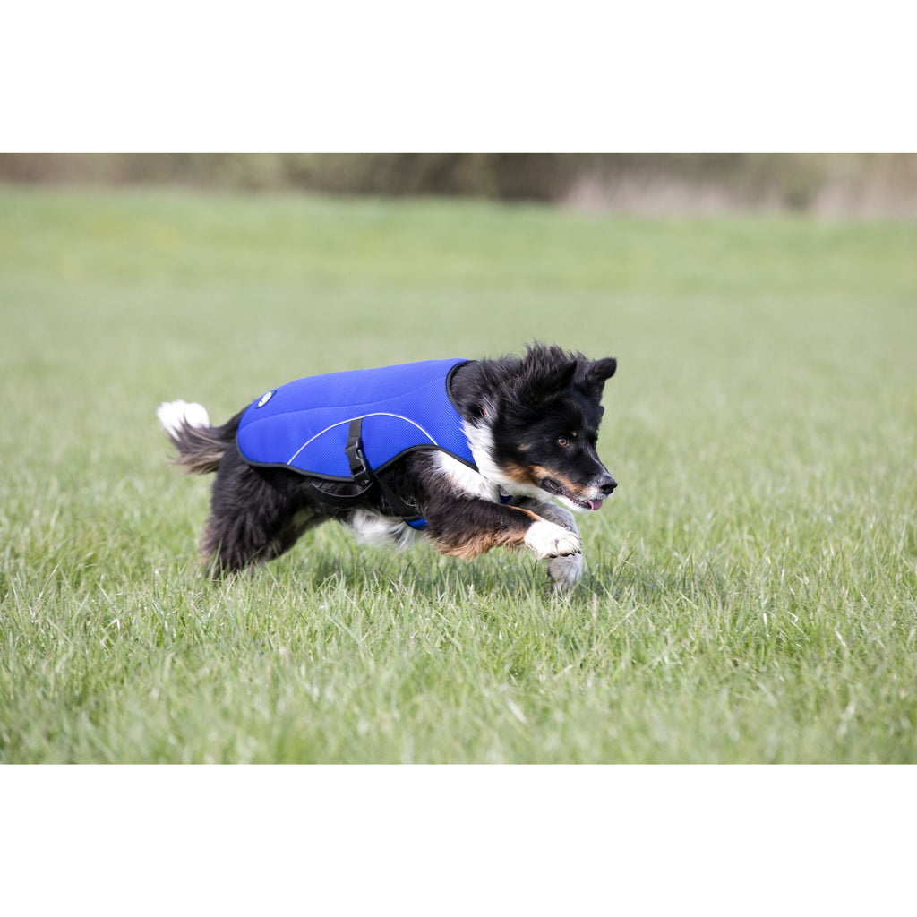 Paws & Presto 'Cool Companion' Ultimate Dog Cooling Vest/Coat