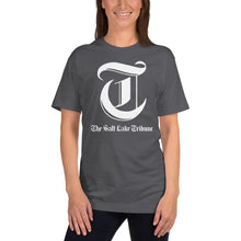 Load image into Gallery viewer, Adult logo T-shirt