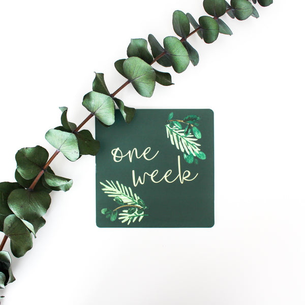 Milestone Card Set - Farmhouse Foliage