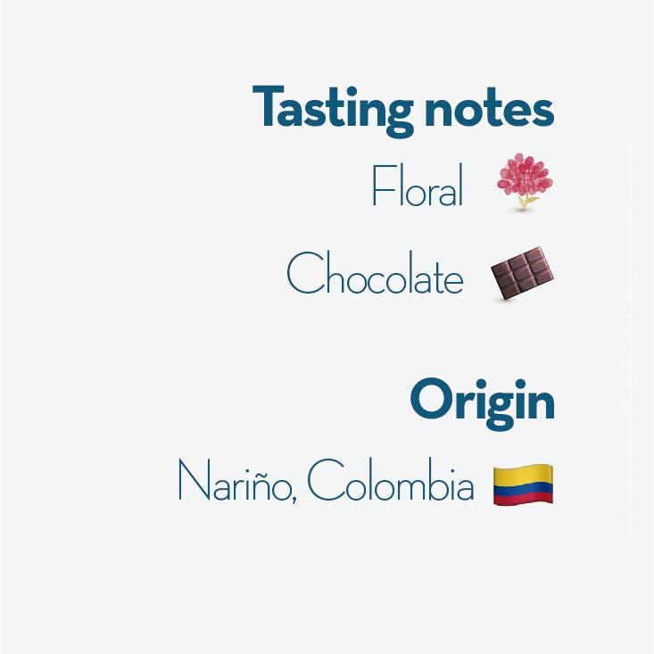 tasting notes el obraje colombian coffee