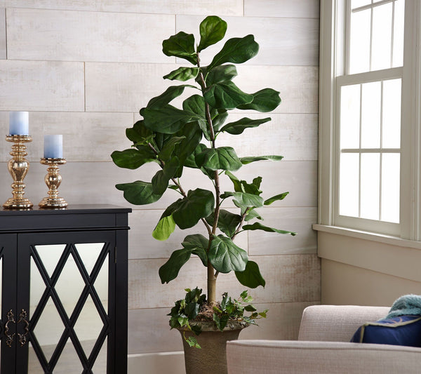 Potted Fiddle Leaf Tree