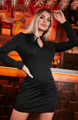 Black Long Sleeve Zip Neck Bodycon Dress