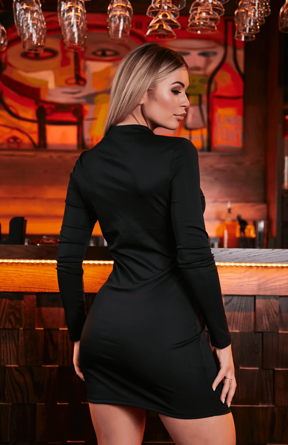 Black Solid Long Sleeve Deep V Neck Bodycon Dress