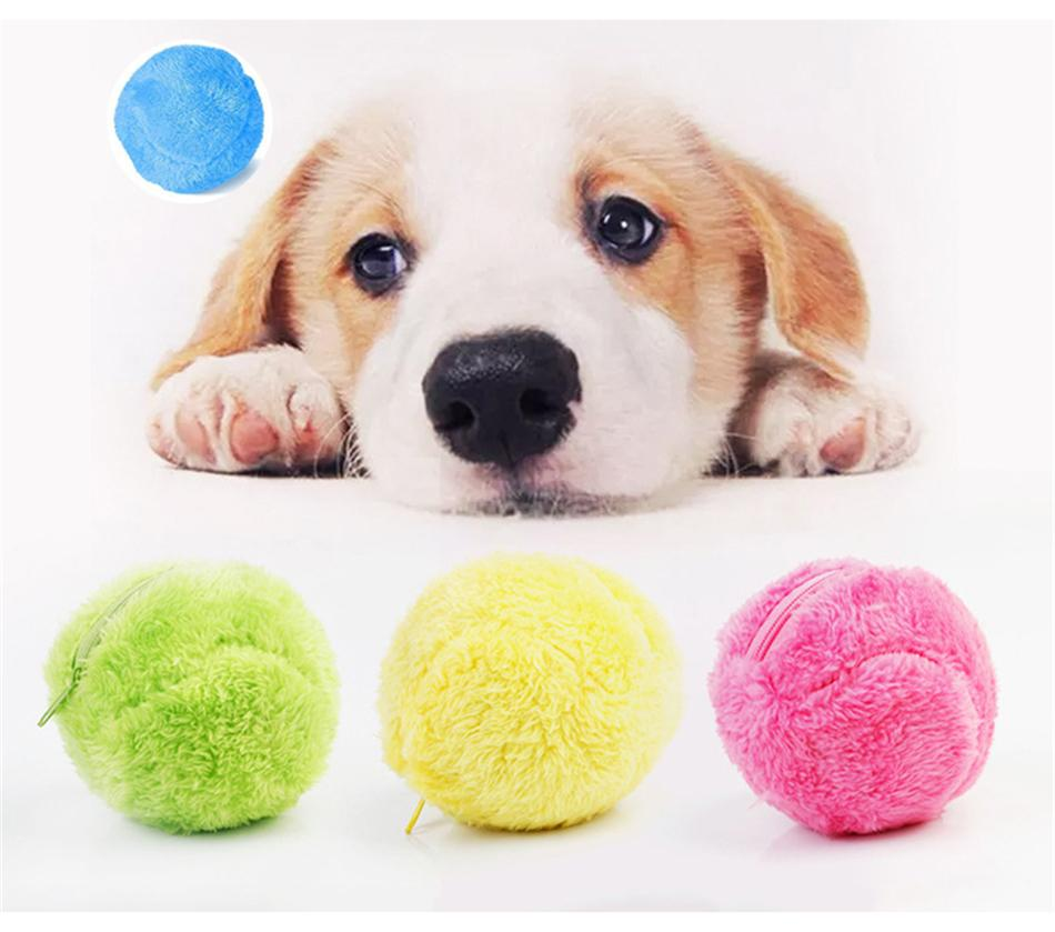Zen Pet™️-Automatic Rolling Ball - Joy Values