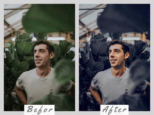 bule lightroom presets android