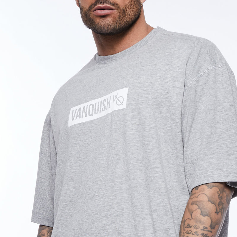 Vanquish Box Logo Ash Grey Oversized T Shirt 3枚目の画像