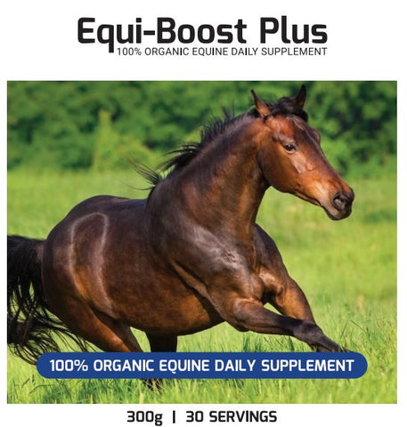 equi-boost anti-inflammatory supplement