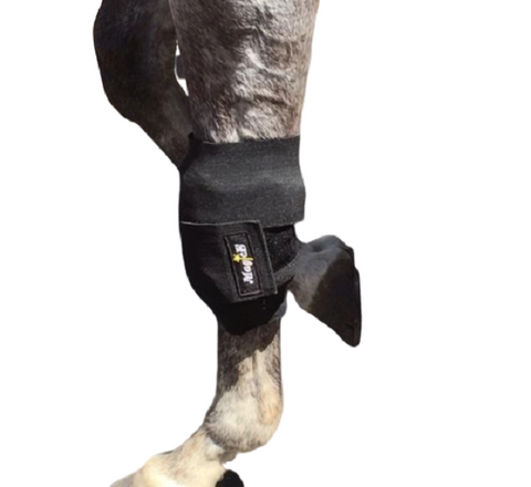 Image of bandage wrap on horses leg