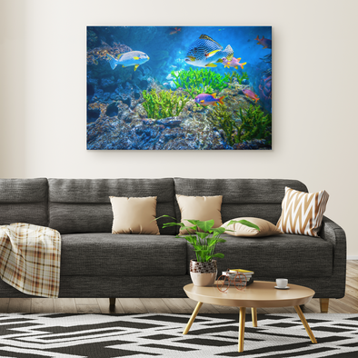You Lookin' At Me? Tropical Fish Canvas Wall Art