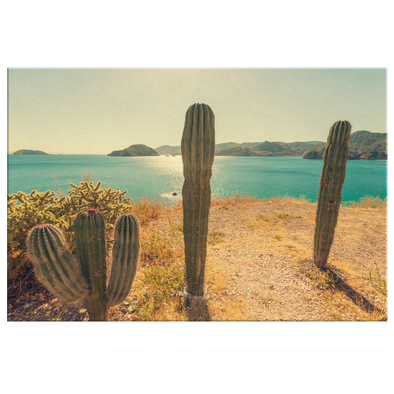 Baja California México Canvas Wall Art