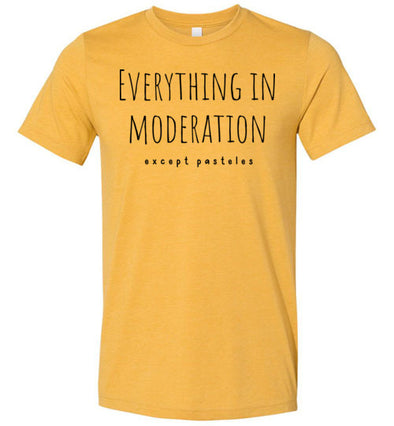 Everything in Moderation - Except Pasteles Adult & Youth T-Shirt