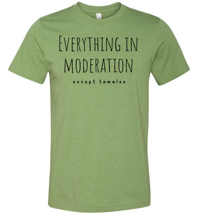 Everything in Moderation - Except Tamales Adult & Youth T-Shirt