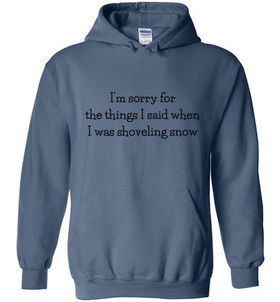 Sorry For The Things I Said Winter Unisex & Youth Hoodie