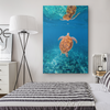 Graceful Sea Turtle Reflection Canvas Wall Art
