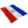 Dreaming with Paraguay Fleece Blanket