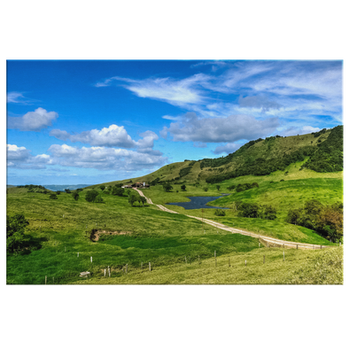 Monteverde Road Costa Rica Canvas Wall Art