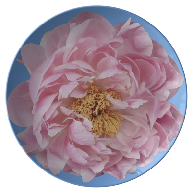 "Peony In Blue Spring 10"" Plate"