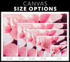 Pink Spring Cherry Blossom Canvas Wall Art
