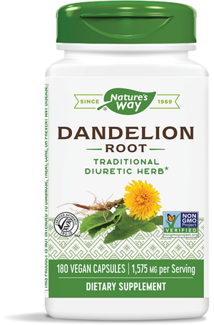 A bottle of Nature's Way Dandelion Root
