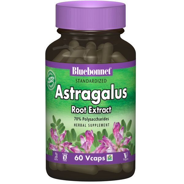 A bottle of Bluebonnet Astragalus Root Extract