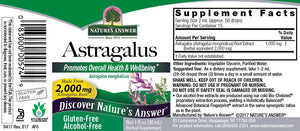Astragalus Alcohol Free Extract 1 fl oz