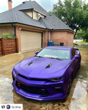 Drop-in Tint - Raail Hendrix Purple