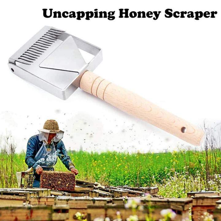 Stainless Steel Honey Uncapping Scraper